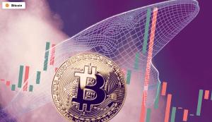 Lee más sobre el artículo La comunidad de ballenas Bitcoin florece a medida que se acerca el Día de Acción de Gracias