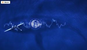 Lee más sobre el artículo El número de ballenas Bitcoin alcanzó un máximo histórico a medida que el mercado se recupera