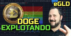 Lee más sobre el artículo DOGE 🐕 y eGLD «EXPLOTANDO» 🚀+ 18 Altcoins !!!