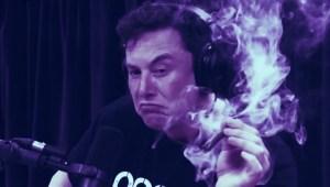 Lee más sobre el artículo El enfoque de Elon Musk para escalar Dogecoin es 'fundamentalmente defectuoso': Cofundador de Ethereum