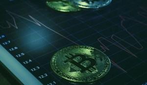 Lee más sobre el artículo A pesar de un desplome histórico, la mayoría de los inversores de Bitcoin siguen en ganancias: Informe