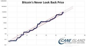 Lee más sobre el artículo Bitcoin nunca ha visto hacia atras