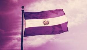 Lee más sobre el artículo El Salvador exime a los inversionistas extranjeros del impuesto sobre las ganancias de Bitcoin