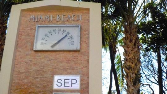 Un día al completo en Miami Beach