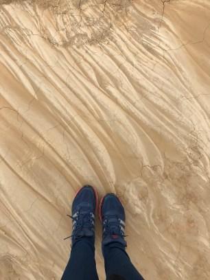 suelo-bardenas-reales