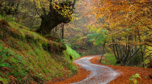 ruta por el Parque Natural de las Ubiñas