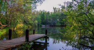 Bosque Finlándes de Rascafría