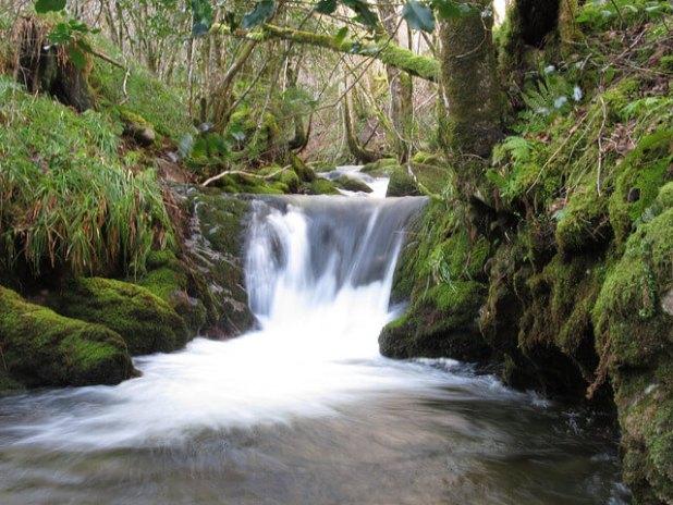 Cascada en Fuentes del Narcea