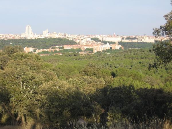 vistas desde el Monte del  Pardo