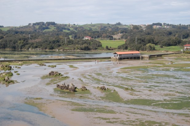Marismas del Joyel con Marea baja