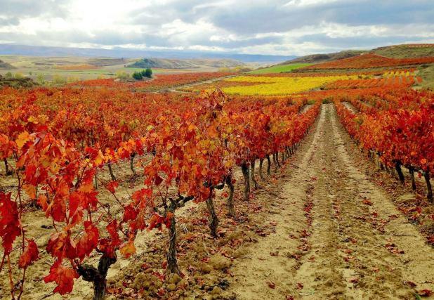 Mejores paisajes de otoño