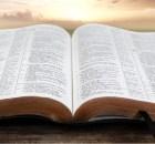 ¿Por qué nos cuesta seguir la voluntad de Dios?