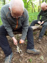 Whittling feather sticks for fire lighting