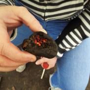 Fire lighting - cramp balls
