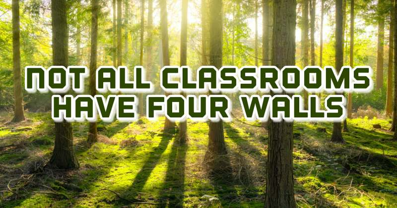 outdoor learning activities South Wales