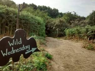 Wild Wednesday Bridgend