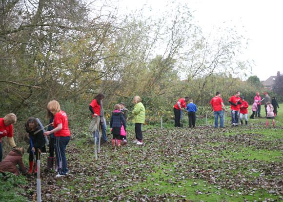 Bushfield students planting trees