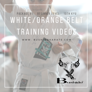 Bushido Karate Training Videos