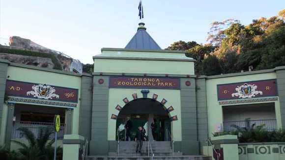 タロンガ動物園メイン