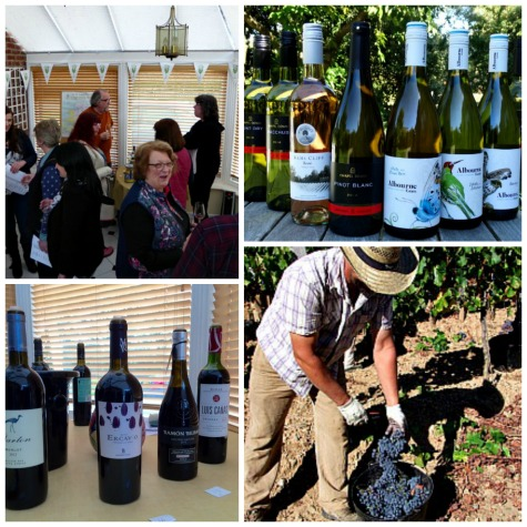 Discover fantastic English and Spanish wines at Bush Vines informal Autumn Wine Tasting 22 & 23 September; great wines, great prices