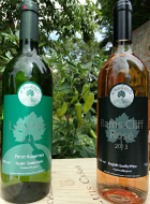 BUSH VINES has great English Wines at Chilli Fiesta