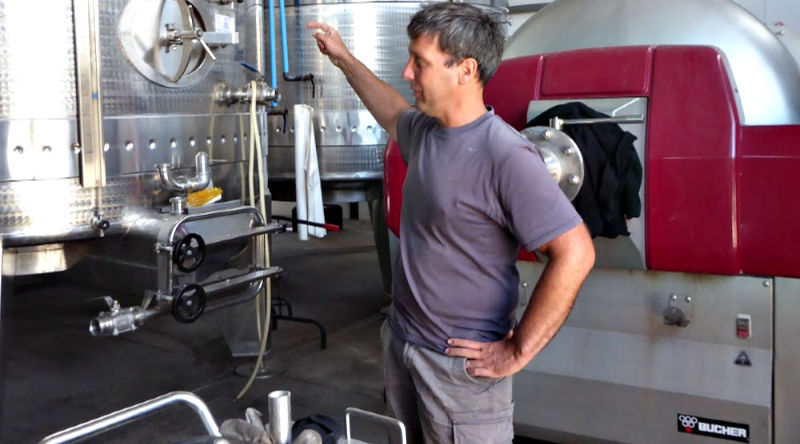 Werner Muller winemaker at Iona since 2009. His passion to coax the very best from the climate, soils and in the making of great wines with expression. Organic and biodynamic practices are used at Iona.