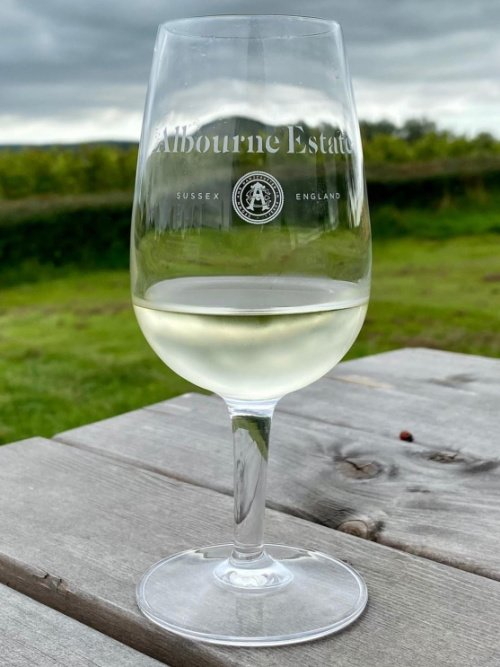 Bush Vines visit to Albourne Estate Sussex was a great success. We all learnt so much about growing grapes and making wines in England and tasted some delicious wines. A memorable day from Grape to Glass!