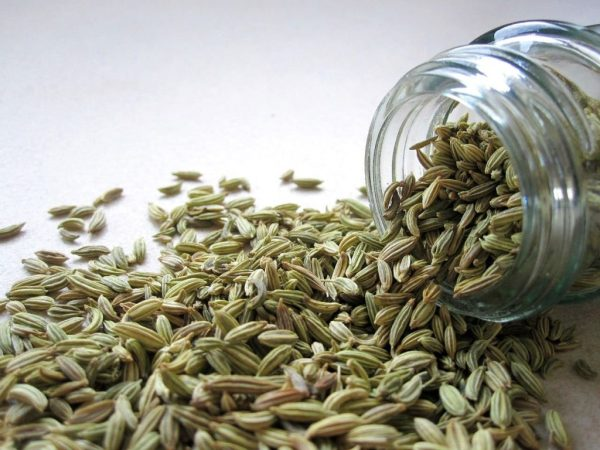 fennel seeds in jar