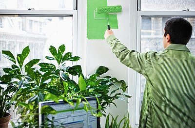 """10 Simple Things You Can Do To """"Green"""" Your Office"""