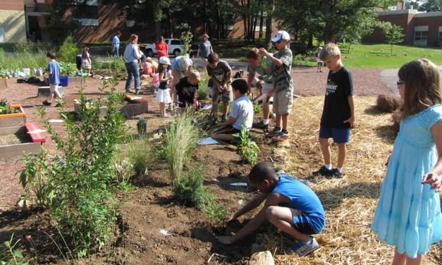How Can Teachers Integrate Sustainabiity Topics Into Their Curricula?