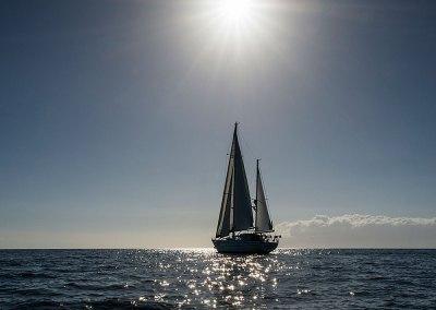 Lord Jim Sailing