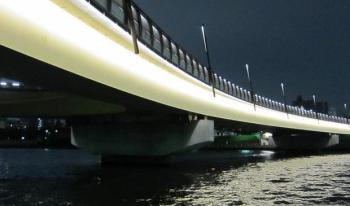橋脚-シーバス