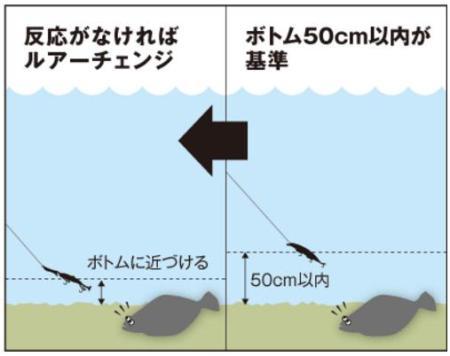 ヒラメ-ワーム-釣り方