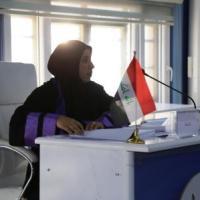 دور الضرائب في تمويل الموازنة العامة في العراق : التحديات القائمة وسياسات الاصلاح