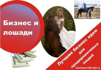 организация отдыха на лошадях