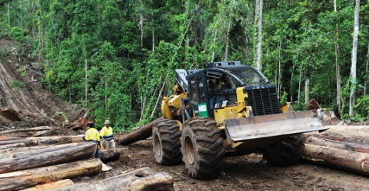 Photo by Rocky Roe © Cloudy Bay Sustainable Forestry