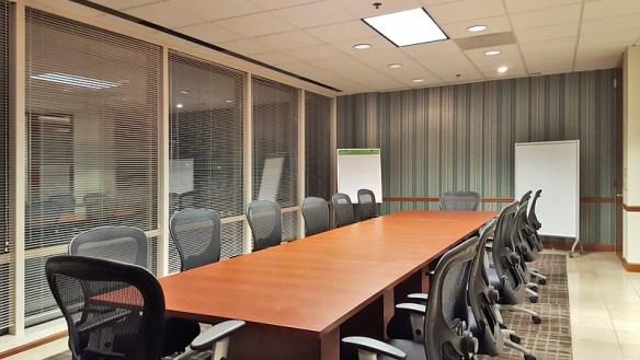 Large Conference Room Business Anger Management Services