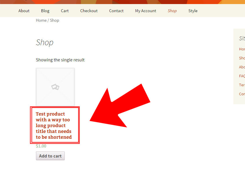WooCommerce. shorten product title on the shop page