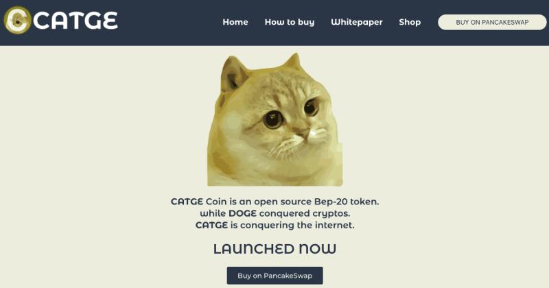 Cos è Catge Coin Facchinetti