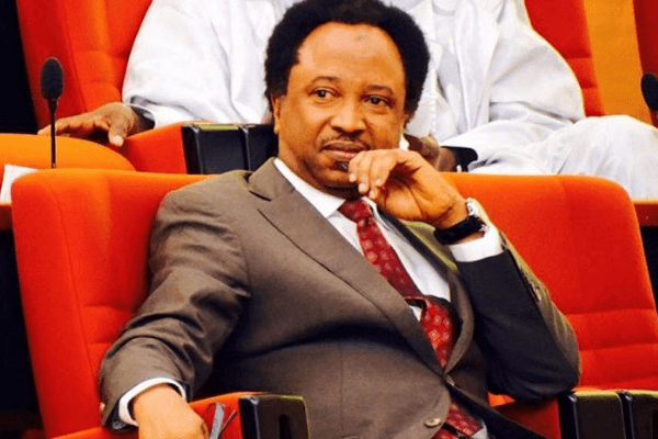 Court orders mean nothing today  Sheu Sani - Businessday NG