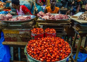 Update 1: Nigerias April inflation accelerates to 12.34%, highest in 2yrs - Businessday NG