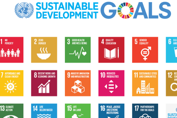 Impact investors that support Sustainable Development Goals (SDGs) - Businessday NG