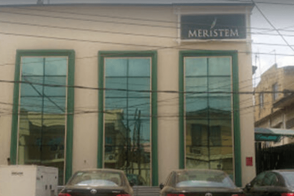 Meristem launches new campaign, relieves own evolution in campaign theme - Businessday NG