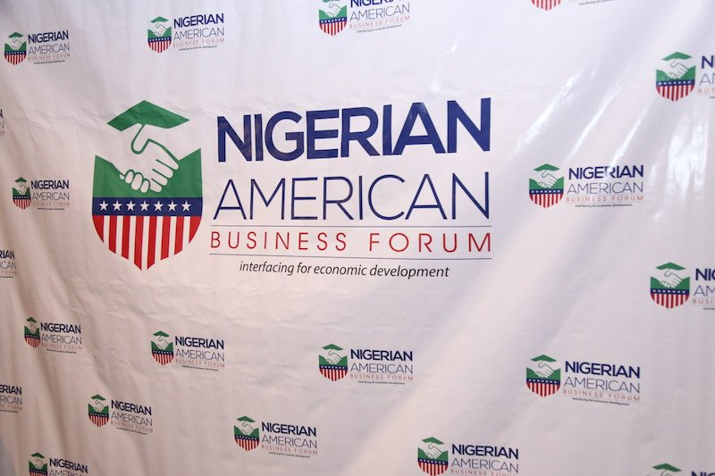 Peter Obi, Oluseyi Makinde, others for NABF Economic Summit in US - Businessday NG