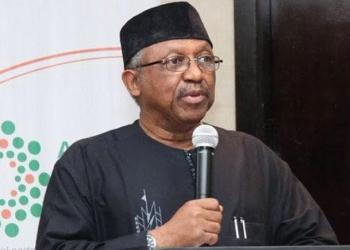 Coronavirus: Nigeria's testing capacity now 1,500 per day - Minister - Businessday NG