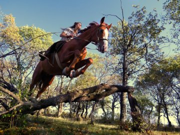 Horse jump forest - The Kyber and OmiseGo network jump 70% with the Bithumb integration while the Bitcoin drops below $ 9,000