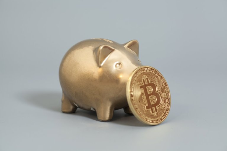 """Piggy bank BTC - """"Inevitable"""" that pensions and endowments make crypto-play: Hedge Fund Exec"""