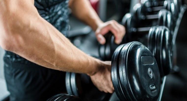 Bene Cursor Gym pro sale in Dubai