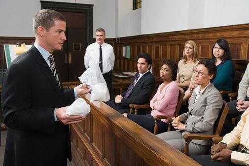 Плюсы и минусы юридического образования
