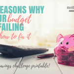 7 Reasons Why Your Budget is Failing